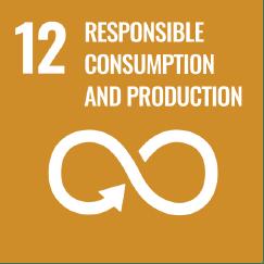 Produção e Consumo Responsáveis